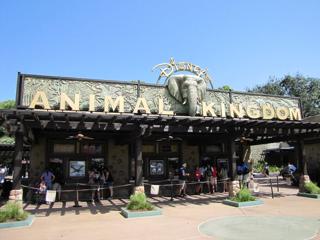 Animal Kingdon
